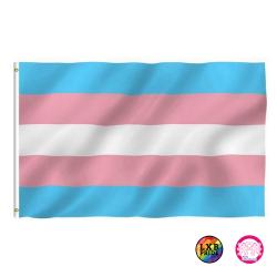 """Fahne """"Trans*Pride"""" (90x150cm)"""